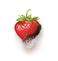 Strawberry chocolate and coconut vector