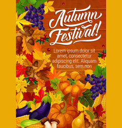 Autumn festival harvest season invitation poster vector