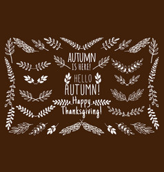 autumn leaves and floral elements plant branches vector image