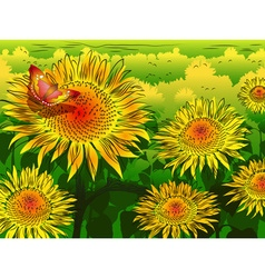 Garden of Sunflowers Sketch vector image