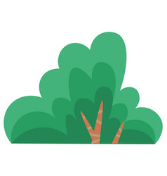 Green summer tree or bush with a lush crown thin vector