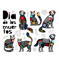 mexican dead animals vector image