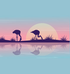 silhouette of flamingo on riverbank at sunrise vector image