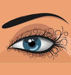 Woman blue eye vector
