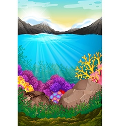 Scene with under the ocean vector image