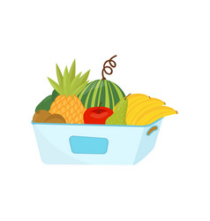plastic container full of ripe fruits healthy vector image