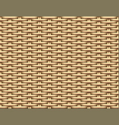 seamless 3d brown rattan pattern art vector image