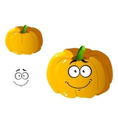 Cartoon pumpkin vegetable vector image