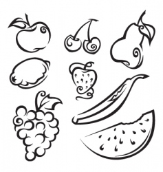 fruit and berries vector image vector image