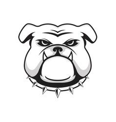 logo bulldog head vector image