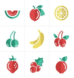 Fruit Icons Set Design vector image