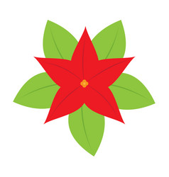 isolated christmas flower icon vector image