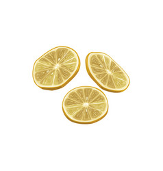 Lemon dried fruits dry food snack fruit sweets vector