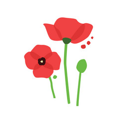 Red poppy with dots vector
