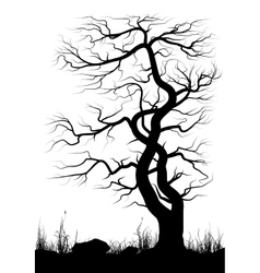 Silhouette of old tree and grass over white vector image