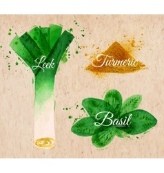 Spices herbs watercolor leeks basil turmeric kraft vector