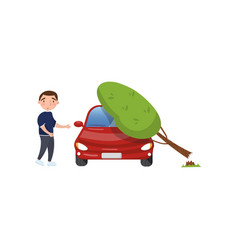 tree falling on vehicle man feeling shocked car vector image