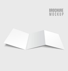 blank tri-fold brochure design isolated on grey vector image vector image