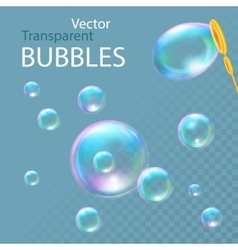 Realistic soap bubbles vector image vector image