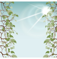 leafs in sun rays EPS10 vector image vector image