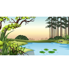 A pond at the jungle vector