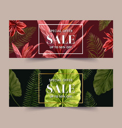 Banner design with tropical plants creative vector