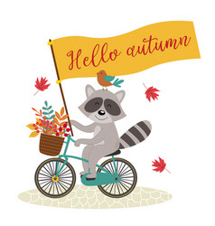 Card raccoon rides bicycle with autumn leaves vector