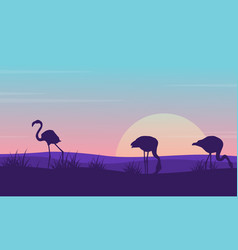 collection of flamingo landscape silhouette design vector image