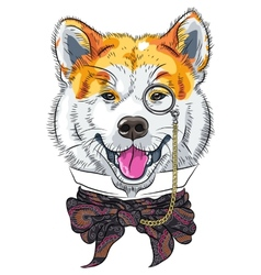 funny cartoon hipster dog Akita Inu vector image