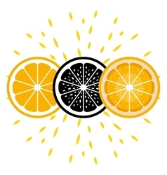 Orange icons In three versions vector image