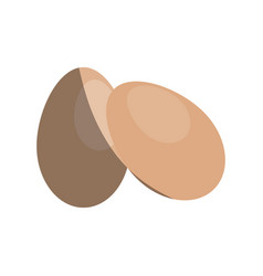 two eggs icon image vector image
