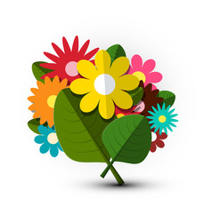 bouquet colorful bunch of flowers vector image