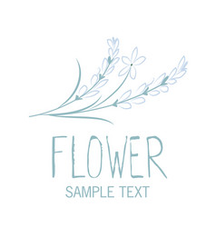various flowers and leaves forming a bouquet on vector image