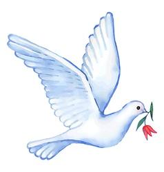 Watercolor soaring dove vector