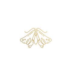 Wild moth silhouette elegant linear vector