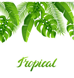 seamless pattern with tropical palm leaves exotic vector image
