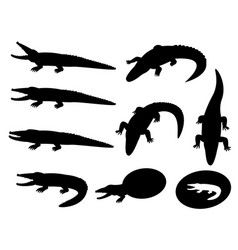 set of crocodile silhouettes on white vector image vector image