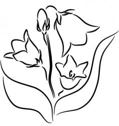 Bellflower vector