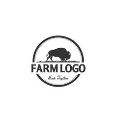 Buffalo or bulls logo designs vector