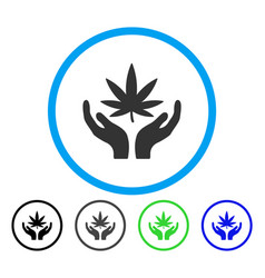 cannabis care rounded icon vector image