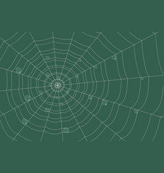 dew on a grid of concentric cobweb on green vector image