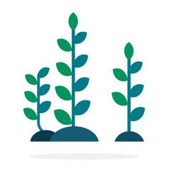 Long algae with leaves vector