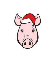 pigs head in a hat vector image