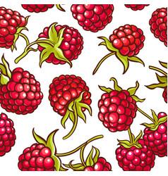 Raspberry berries pattern vector
