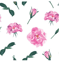 seamless pattern with briar vector image