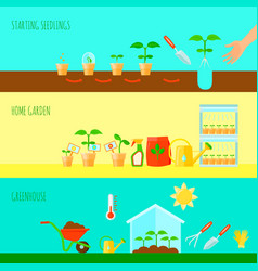 Seedling banners set vector