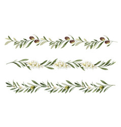 Watercolor set borders olive branches vector