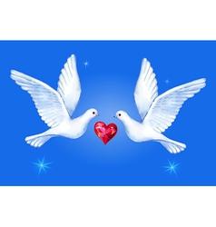 Watercolor soaring pigeons pair vector
