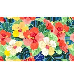 tropical colorful hibiscus vector image vector image
