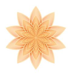 lotus flower orange vector image